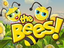 игровой автомат The Bees / Пчелы