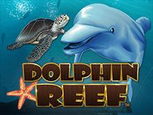 игровой автомат Dolphin Reef / Риф Дельфинов